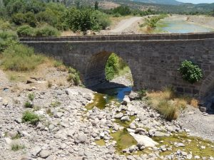 bridge-n-of-assos-3