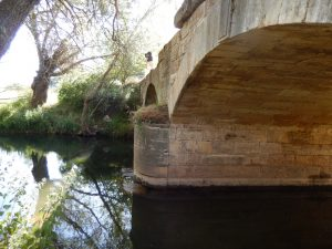 n-eskigediz-bridge-6